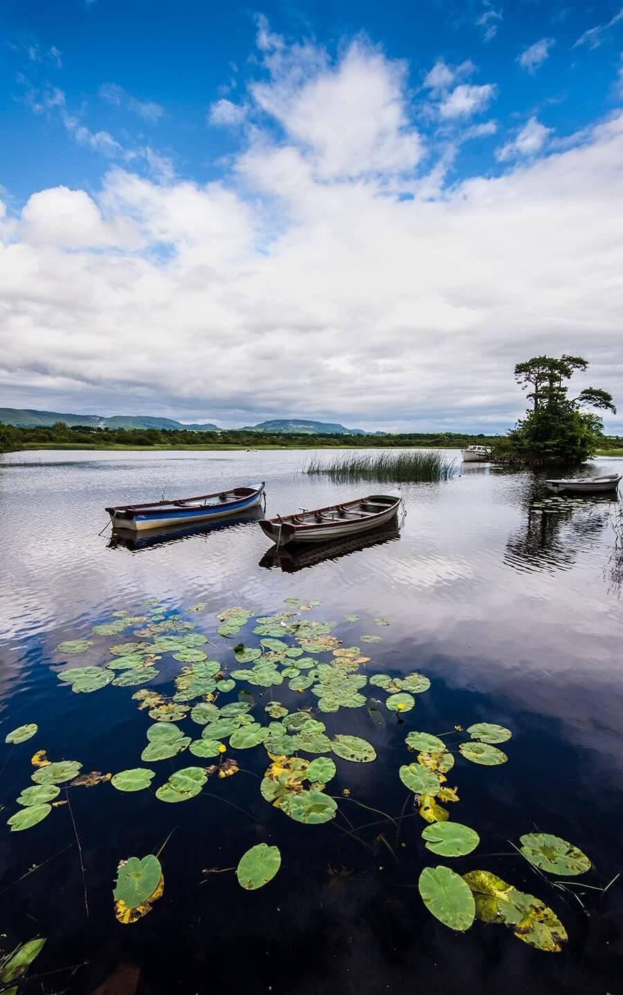Doorley Park, Sligo